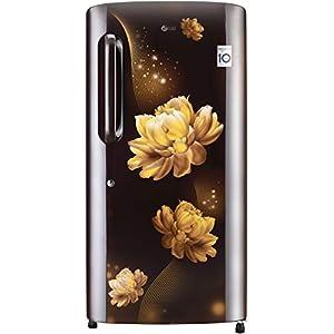 LG 215 L 4 Star Inverter Direct-Cool Single Door Refrigerator (GL-B221AHCY, Hazel Charm, Fastest Ice Making)