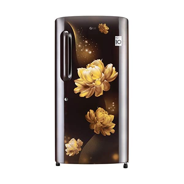 LG 215 L 4 Star Inverter Direct-Cool Single Door Refrigerator (GL-B221AHCY, Hazel Charm, Fastest Ice Making) 2021 July Direct-cool refrigerator: Economical and Cooling without fluctuation Capacity 215 litres: Suitable for families with 2 to 3 members and bachelors Energy Rating 4 Star: High energy efficiency