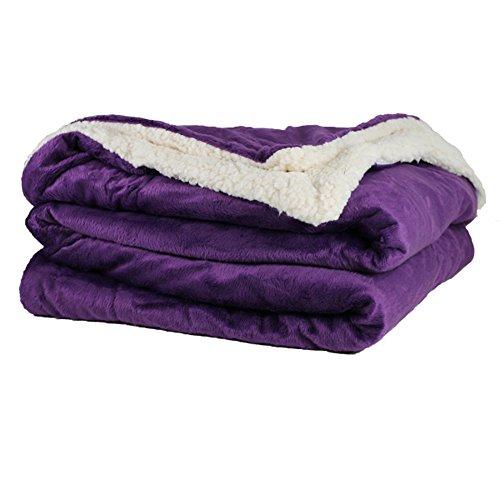 Micro Mink Sherpa Throw (Throw Blanket - Micro Mink and Lambswool Sherpa (Purple))