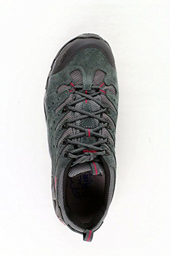 Anthrazit Schuhe Men Portland Multicolor GTX Meindl dIwHq7H