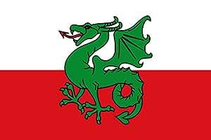 magFlags Large Flag Navès | Apaisada | Apaïsada | landscape flag | 1.35m² | 14.5sqft | 90x150cm | 3x5ft - 100% Made in Germany - long lasting outdoor flag