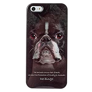 SUMCOM Animal Series Boston Terrier Pattern Plastic Case for iPhone 5/5S