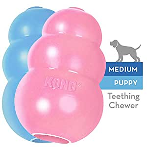 KONG - Puppy Toy - Natural Teething Rubber - Fun to Chew, Chase and Fetch - for Medium Puppies (Colour May Vary)