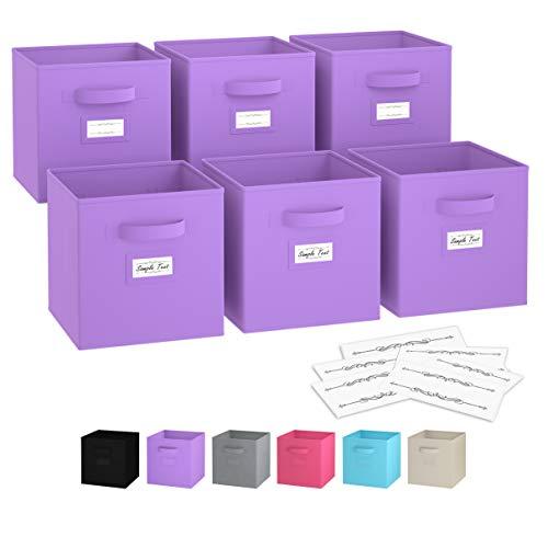 Royexe - Storage Cubes - (Set Of 6) Storage Baskets | Features Dual Handles & Label Window with 10 Label Cards | Cube Storage Bins | Foldable Fabric Closet Shelf Organizer (Purple)