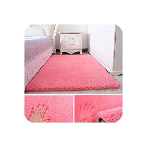 Soft Shaggy Carpet for Living Room European Home Warm Plush Floor Rugs Fluffy Mats Kids Room Faux Fur Area Rug Living Room Mats,010,800Mm X 1600Mm ()