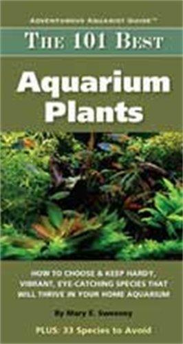 Tfh Nylabone ATFMC127S The 101 Best Aquarium Plants
