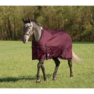 - Rider's by Dover Saddlery Supreme Heavyweight Turnout Blanket - Navy/Navy, 78