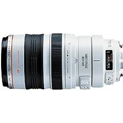 EF 100-400mm f/4.5-5.6L