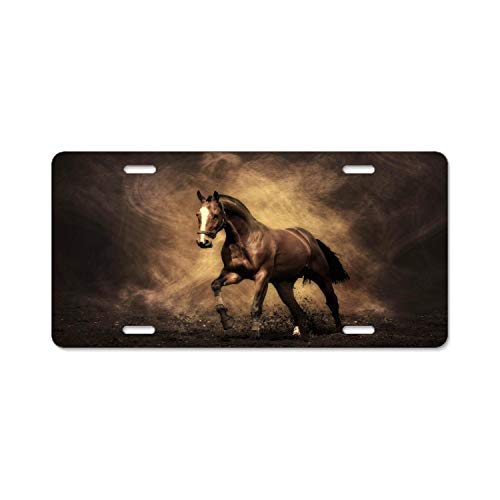 Wild Horse Racing Aluminum License Plate Novelty Auto Car Tag Sign Novelty Vanity License Plates (12