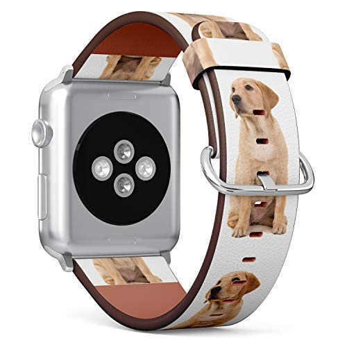 (Golden Retriever Puppy) Patterned Leather Wristband Strap for Apple Watch Series 4/3/2/1 gen,Replacement for iWatch 38mm / 40mm Bands