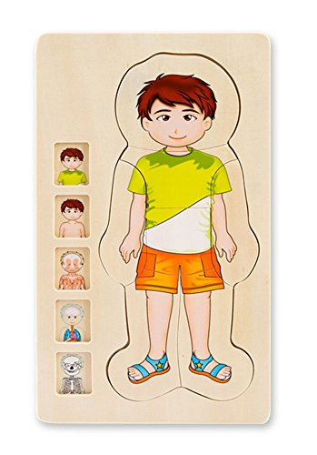 Puzzle Body Wood (Your Body 5 layers Wooden Puzzle Boy Grow up Body Structure Jigsaw Puzzles for Toddlers)