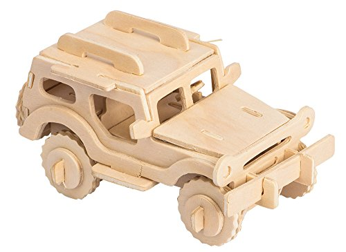 Review 3D Wooden Model Toy