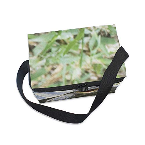 Bag Strap Cooler Shoulder Lunch Turtle for Graeca Greek Lunchbox Picnic Testudo Ibera fnS7Avn