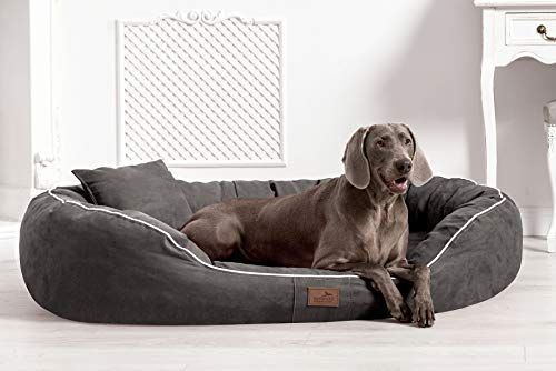 TIERLANDO® Ultimate Marlon Orthopedic Dog Bed with Visco plus Mattress in Velour  Soft Lounge  Size M L XXL XXXL   85 cm to 220 CM Graphite Grey, 55.11 x39.4 x11.81  Inside (W x D)  41.33 x29.52