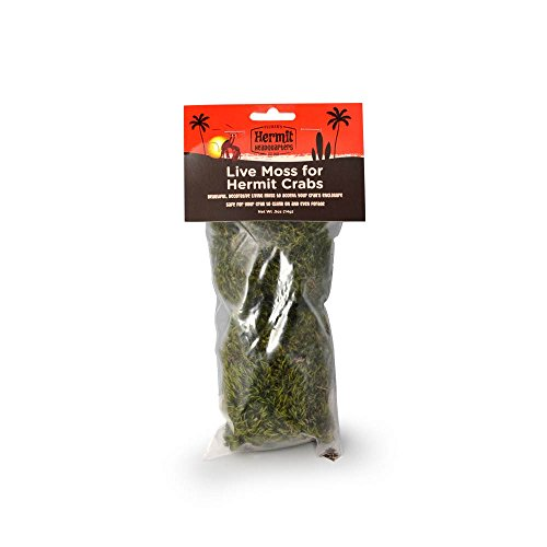 (Flukers Live Moss for Hermit Crabs, 0.5-Ounce)
