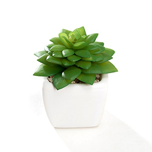 Nattol Modern Mini Artificial Succulent Plants Potted in Cube-Shape White Ceramic Pots for Home Decor, Set of 4 (White) by Nattol (Image #4)