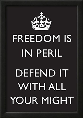 Freedom is in Peril, Defend It With All Your Might (Motivational, Black) Art Poster Print Framed Poster 15 x 21in by Poster Revolution