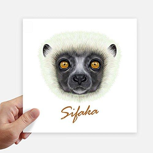 DIYthinker White Fluffy Sifaka Monkey Animal Square Stickers 20cm Wall Suitcase Laptop Motobike Decal 4pcs