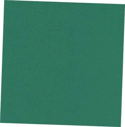 Fabric Delaware Grass Duck Cloth Canvas 9-10oz 58