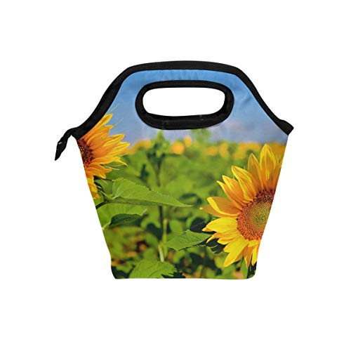 Lunch Bag Insulated Byo Lunch Bag Lunch Tote Bags For Men Women Kids Flora