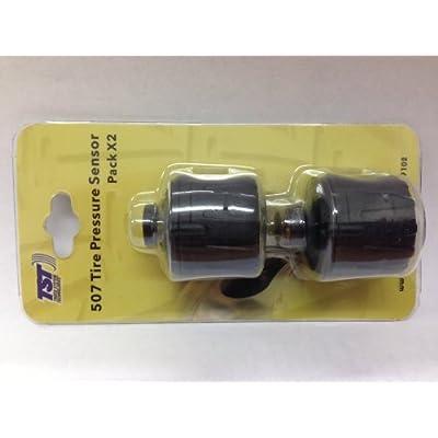 TST 507 Non Flow Thru Tire Sensor - 2 Pack: Home & Kitchen