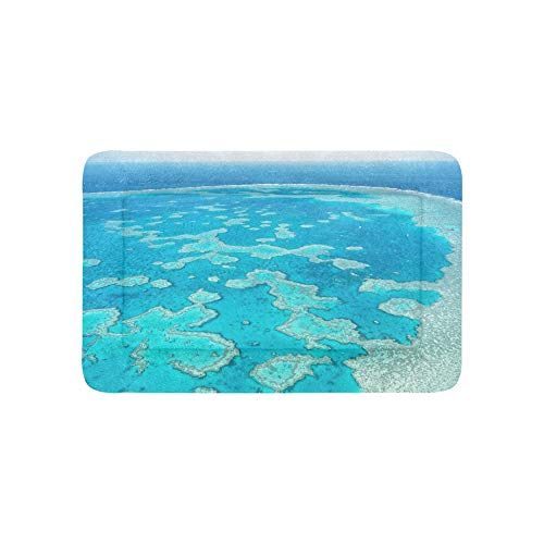 Australia Great Barrier Reef Coral Extra Large Bedding Soft Pet Dog Beds Couch for Puppy and Cats Furniture Mat Cave Pad Cover Cushion Indoor 36x23 Inch (Queensland Outdoor Furniture)
