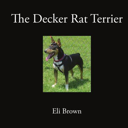 (The Decker Rat Terrier )
