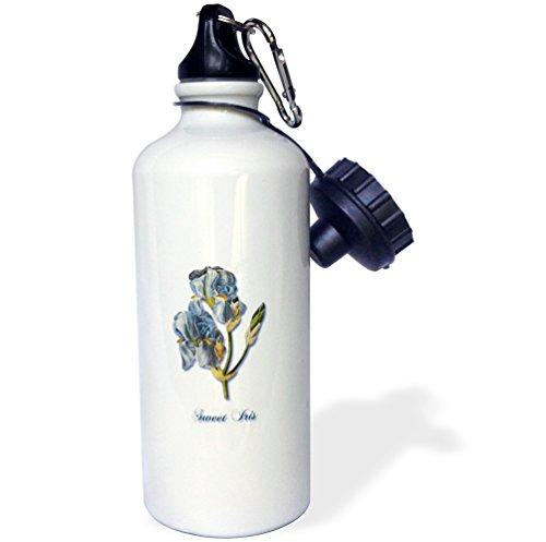3dRose Sweet, Botanical Print of a Light Blue Bearded Iris-Sports Water Bottle, 21oz (wb_171218_1), 21 oz, - Iris Bearded Spring Blue