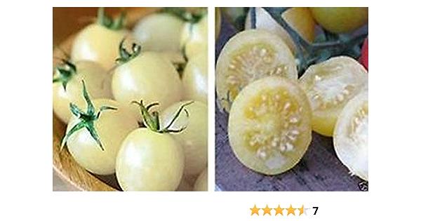 25 White Beauty Snowball Tomato Seeds