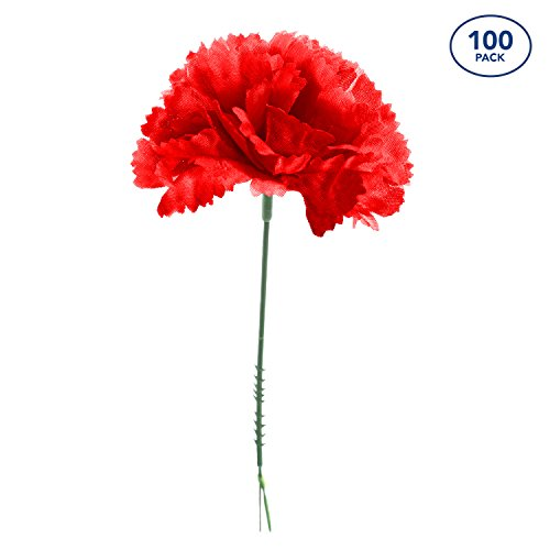 Royal Imports 100 Red Silk Carnations, Artificial Fake Flower Bouquets, Weddings, Cemetery, Crafts & Wreaths, 5