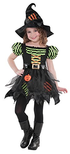 Juniors Pumpkin Patch Witch Costume Size Medium (8-10) (Halloween Clearance Costumes)