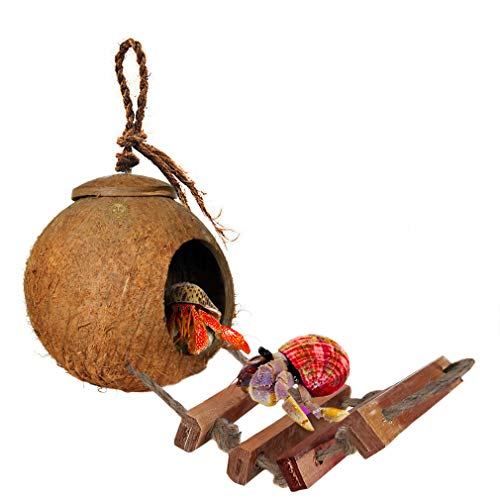 SunGrow Hermit Crab Coco Den with Ladder - Nesting Home Hide - Mini Condo for Crustaceans - Coconut Texture Provide Food for Pets - Raw Coconut Husk Hide - Durable Cave Habitat with Hanging Loop