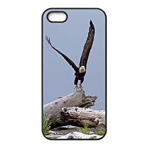 K-G-X Phone case For Apple Iphone 5 5S Cases Case-Pattern-1 Flying Eagles Protective Back Case