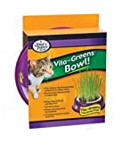 Four Paws Vita Greens Plastic Holder and Grass Combo, My Pet Supplies