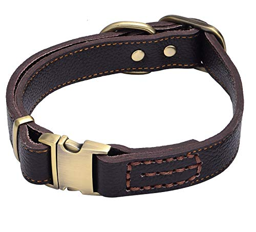 Sindello Genuine Leather Pet Dog Collar Durable and Comfortable Adjustable S M L Black Brown (M, Brown)