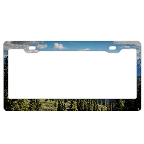 Elvira Jasper Wet Mountain Valley Fashion Design Cool Plate Tag Car License Plate With 4 Holes