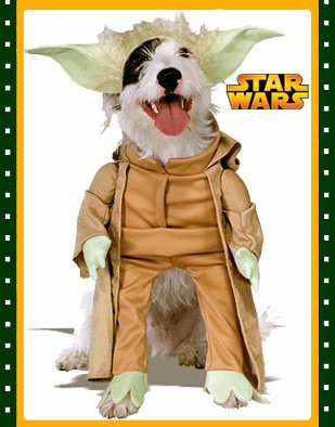 Jedi Master Yoda Star Wars Pet Dog Size Small Costume  sc 1 st  Amazon.com & Amazon.com : Jedi Master Yoda Star Wars Pet Dog Size Small Costume ...