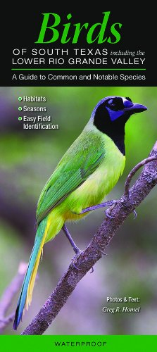 Birds of South Texas incl. the Lower Rio Grande Valley: A Guide to Common & Notable Species (Quick Reference Guides)