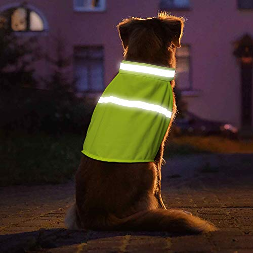 (Vizpet Dog Reflective High Visibility Safety Vest for Outdoor Activity Day and Night, Keep Your Dog Visible and Safe (Green, Large))