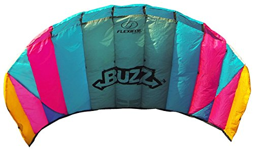 FLEXIFOIL 1.45m 2-Line Buzz Power Kite with 90 Day! By World Record Winning Designer of 2-line and 4-line Power Kites - Safe, Strong, Reliable and Durable Family Outdoor Activity by FLEXIFOIL