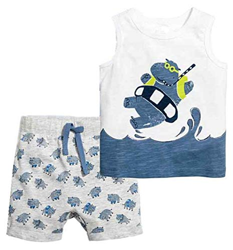 DZRZVD Hippo Boys Girls Kids Babys Toddler Infant Summer Cute Cotton T Shirts Tees Clothes Matching Set Outfits