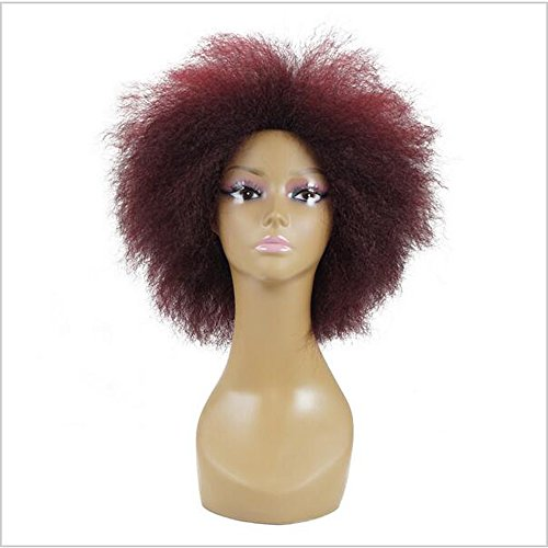 Befunny Synthetic Wigs Afro Short Wigs for Black Women Synthetic Costume Short Wig Short Kinky Red Wine Synthetic Hair Wigs Soft Fluffy Full Wig Short Wigs For Parties (Party City Costums)