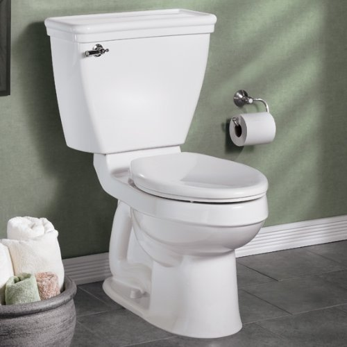 033056648025 - American Standard 5325.010.020 Champion Slow Close Elongated Toilet Seat, White carousel main 2