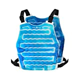AlphaCool Original Cooling Ice Vest for Men and