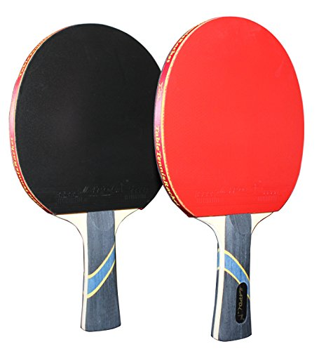 MAPOL 4 Star Professional Ping Pong Paddle Advanced Training Table Tennis Racket With Carry Case ( 2PCS)