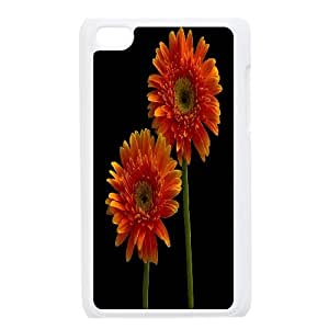 Ipod Touch 4 Phone Case Gerbera Daisies EF66332