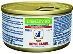 Royal Canin Veterinary Diet Urinary SO Moderate Calorie Morsels in Gravy Canned Cat Food 24 3 oz