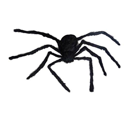 Spiderweb Halloween Large Big Spider and Spider Web Differen't Size (Halloween Picters)