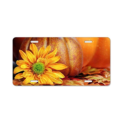 Beautiful Yellow Flower and A Big Pumpkin for Halloween License Plate Frame, DIY Licenses Plate Covers for Both Front and Back, License Tag Stainless Steel Metal License Plate -