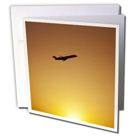 Texas Dallas Airport, American Airlines - Greeting Cards, 6 x 6 inches, set of 12 - Port Air Dallas